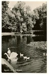 1961 Vijver Volkspark Rijssen