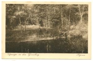 Vijvertje in den Grimberg