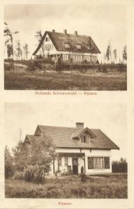 hollands schwarzwald