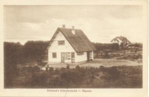schwarzwald 04