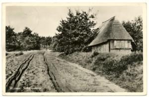 schaapskooi 1955