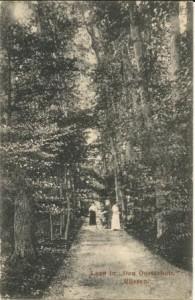 laan in den Oosterhoff 1913 - kopie
